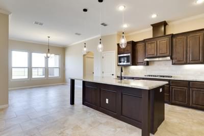 The 14446 Chalk Ridge Dr., McAllen, TX 78504 McAllen , New Home for Sale